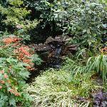Part of the wonderful garden/patio