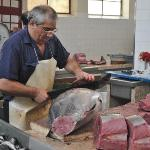 decoupe du thon rouge
