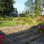 Willow Farm Garden