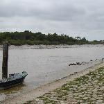 La Charente à marée basse