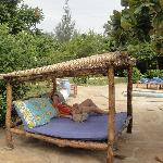 One of the sun loungers - very comfortable and plenty around the place