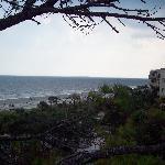 Foto de Marriott's Monarch at Sea Pines