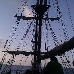 Not So Jolly Roger