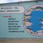 Zoocriadero de Cocodrilos