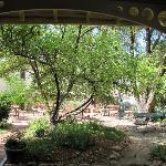 Madeleine Inn Garden from the Porch