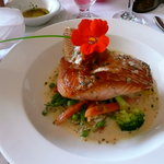 Wild Salmon with Risotto