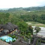 View from Baturiti Lobby Lounge towards the valley of Baturiti and rice fields
