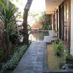 Back courtyard and pool