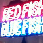 At the bar at Red Fish Blue Fish