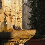 Pizzo Fountain