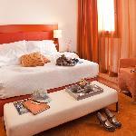 Lady Orange  - Al Tezzon Hotel Padua