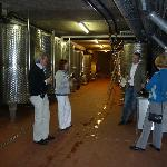 Führung durch den Weinkeller mit Weinprobe