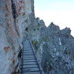 Sentiero dei Fiori - Adamello