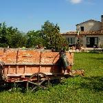 Il Vecchio Maneggio main building and grounds