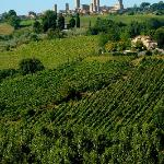 View of the towers of San Gimignano from Il Vecchio Maneggio.