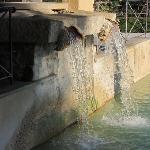 the thermal waters