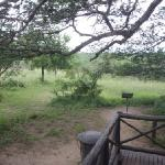 Braai area - view from the patio
