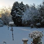 A rare snowfall