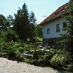 Beautifully made up garden
