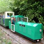 The woodland train runs through the heart of Brokerswood