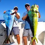 30 lb. Dolphins (Mahi Mahi)