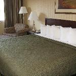 Spokane Valley Quality Inn -- King bedroom
