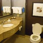 Suite toilet areas