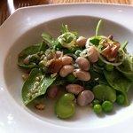 Spinach bean and shallot salad