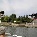 Paul's Boat Lines 2