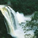 Athirapally Waterfalls Tour Packages Kerala