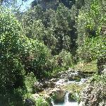 ruta del Borosa (Sierra Cazorla)