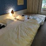 standard room with 1 single daybed and 1 single trundle bed
