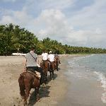 Starting the horse-ride along the beach