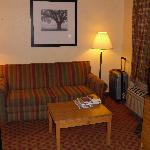 Sofa and reading area