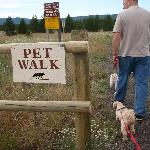 Great Place to walk your pets!