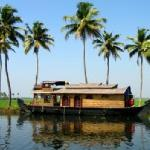 Foto de In Love with Kerala? - Day Trips and Tours
