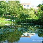 Vue du parc et de l'étang