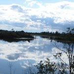 Lake at Refuge