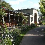 Wilhelma gardens