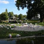 Welhelma flamingos
