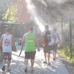 Great overhead water mist sprays