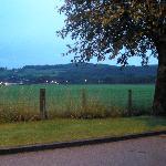 Vista de paisaje con ovejas p