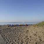 Camping Ca' Savio照片