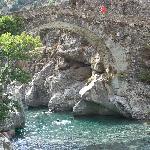 Photo de Domaine de l'Avidanella