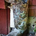 The old gumboot