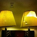Rotten lamp shades.