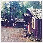the other cabins next door