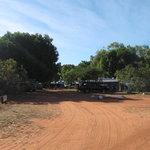 The tree shaded park
