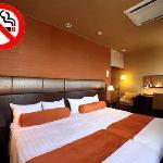 Non-smoking twin room