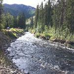 Carlo Creek